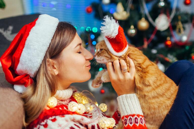 Julgåvor för katt