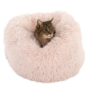 Katt i kattsäng Mochi